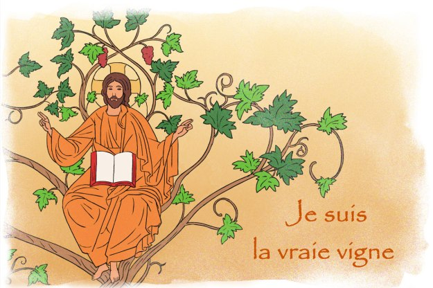 jesus-vraie-vigne